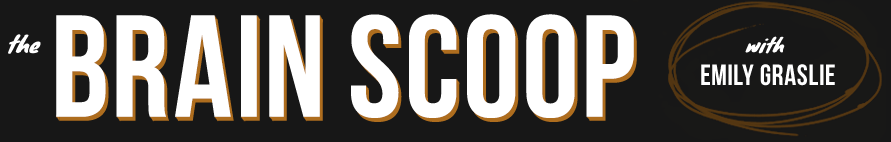 brainscoop_logo